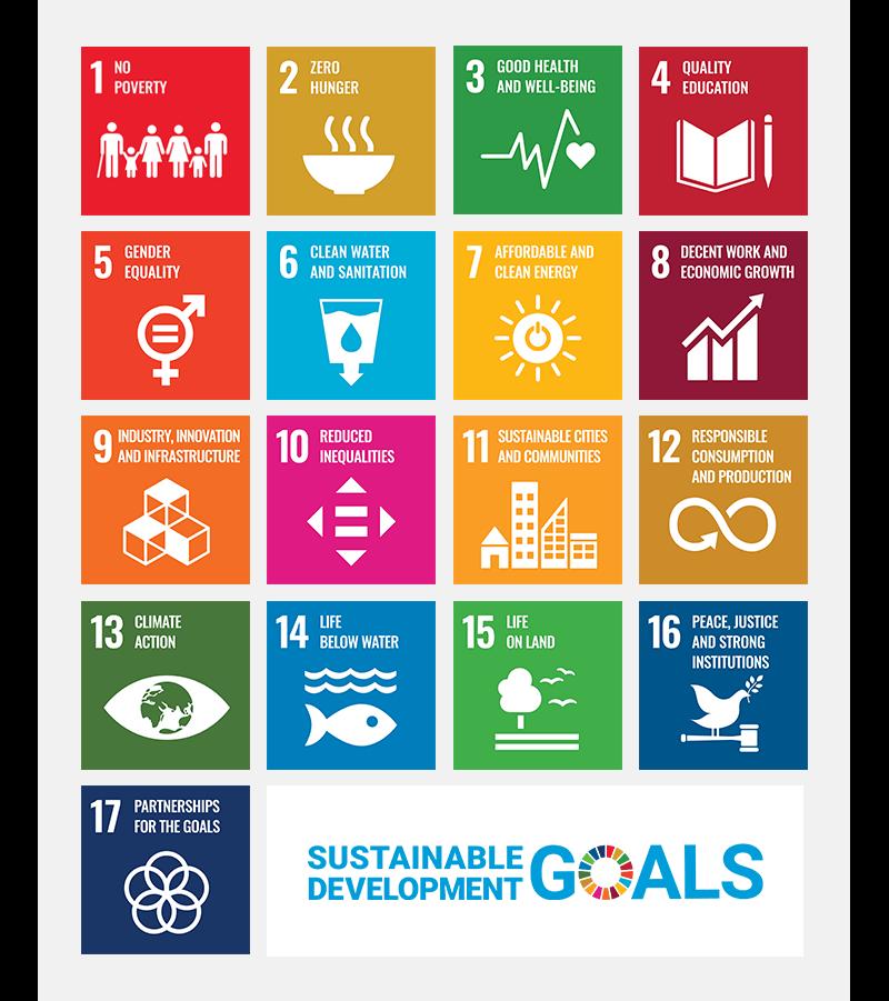 Sustainable Development Goals through access to finance